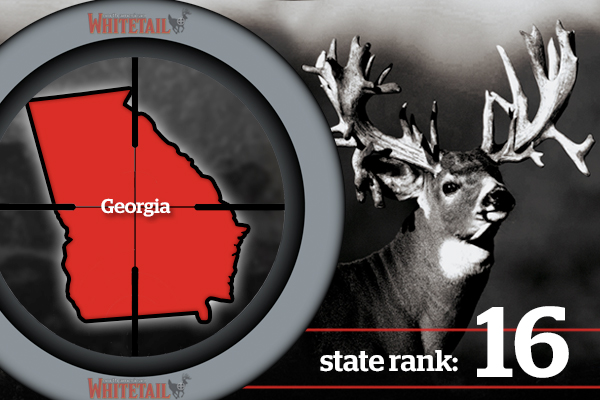 //www.northamericanwhitetail.com/files/best-deer-states-for-2013/16-best-whitetails-states-2013-ga.jpg