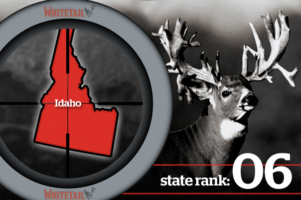 //www.northamericanwhitetail.com/files/best-deer-states-for-2013/6-best-whitetails-states-2013-id.jpg