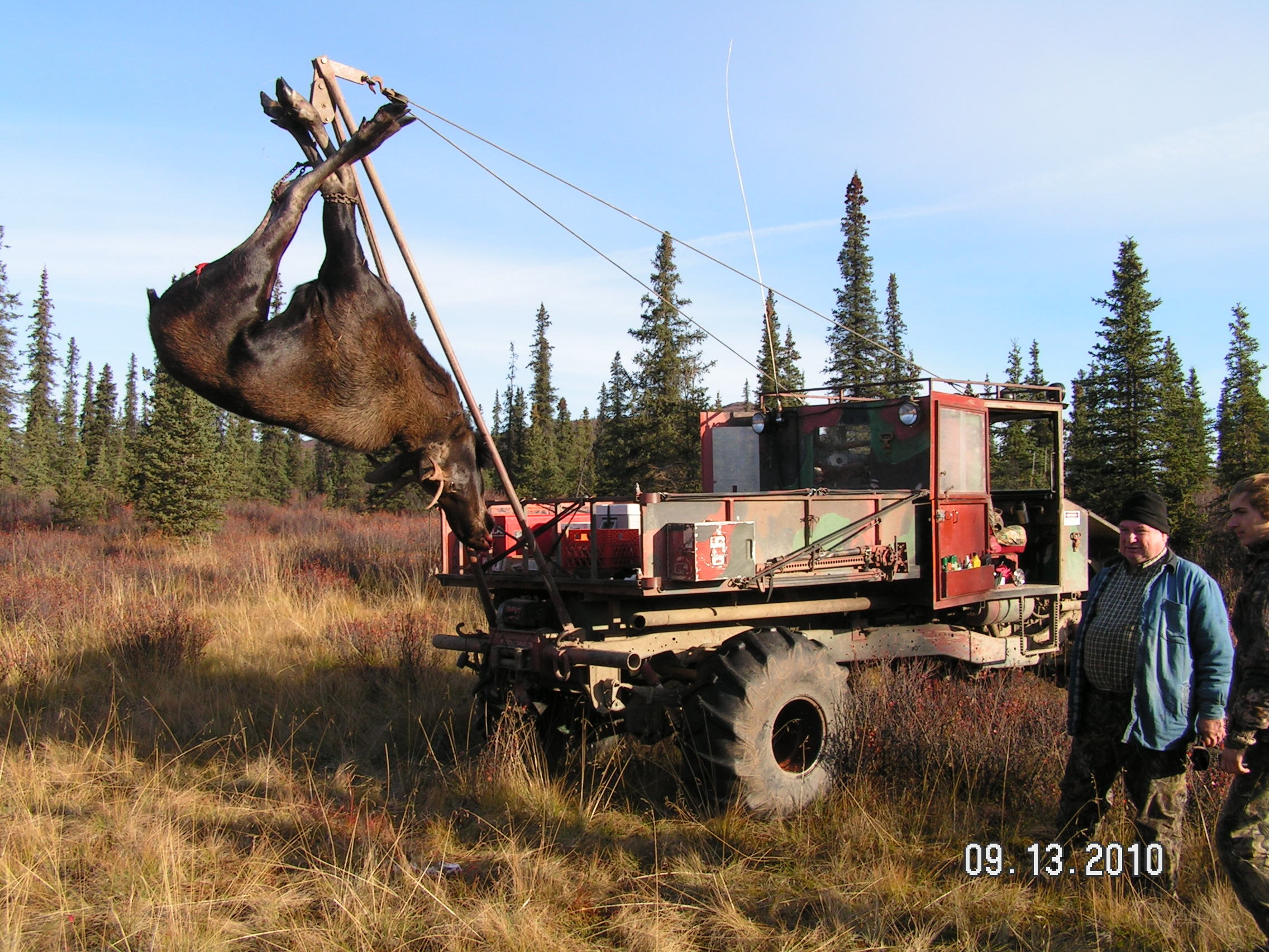 Moose Buggies Petersen S Hunting