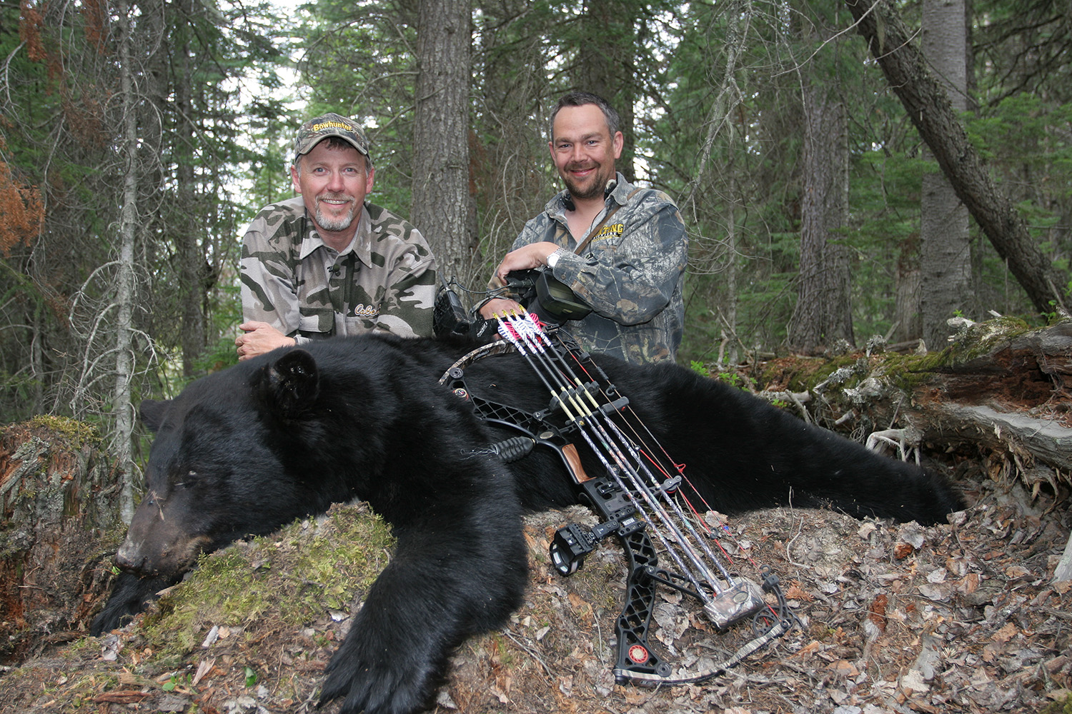 Ignorance and Death - Grizzly Attack