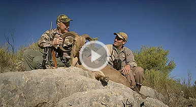 Craig Boddington heads to the Pyrenees Mountains on a Spanish aoudad hunting adventure.