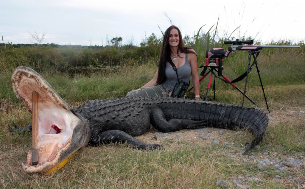 hog hunting with crossbow with Video Alligator Hunting In South Carolina on 551761391823706977 also Video Alligator Hunting In South Carolina moreover Watch furthermore Snap Shot North America Game Image Roll together with How Fast Can A Coyote Run.