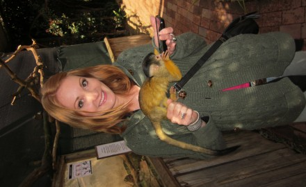 Brittany and Monkey