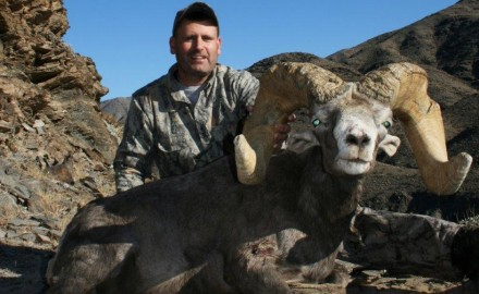 Barely one day into bighorn season, California may have a new state record.  Sacramento area