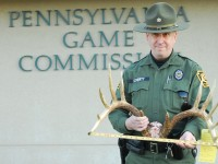 Pennsylvania poaching