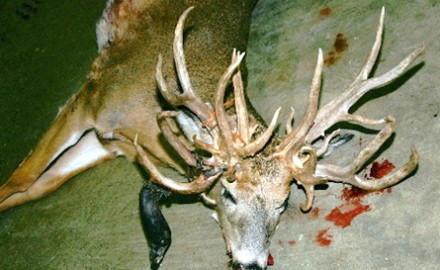 Trophy buck? Not quite.  West Salem, Ill., native Richard Lomas shot this 30-point whitetail at