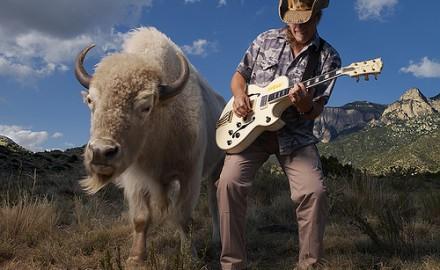 Nuge with a buffalo