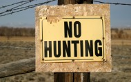 Grungy No Hunting Sign