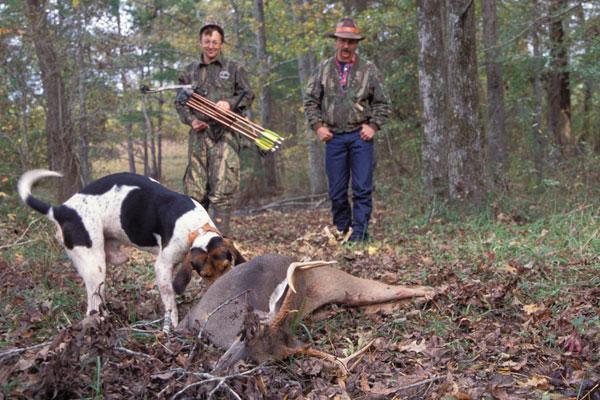 Free Dogs In Southwest Louisiana