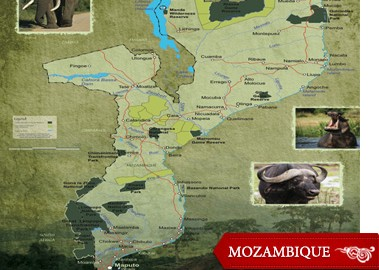 Just a few years ago, I wouldn't have offered up Mozambique as a first safari option, but Africa