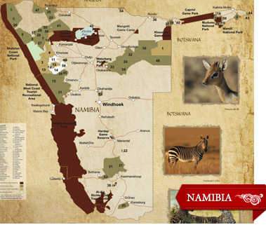 4 Great Options for a First Safari: Namibia