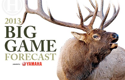 2013 Big Game Forecast