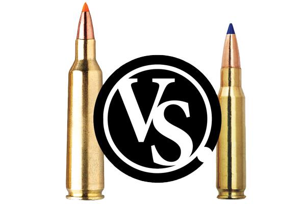 What's The Best Coyote Cartridge?  22-250 Versus  223