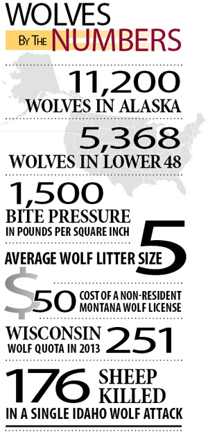 wolves_chart