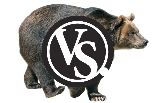 Spot-and-Stalk Vs. Baiting: What's the Best Bear Hunting Method?