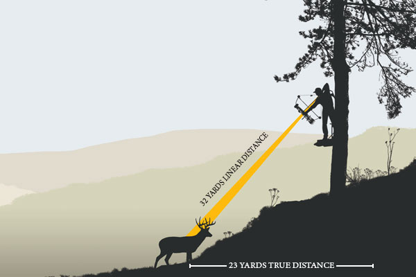 Understanding Treestand Trajectory For Bowhunters Petersens Hunting