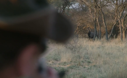 Kevin Steele and CZ's Jason Morton pursue the magnificent nyala across the Kalahari savannah.