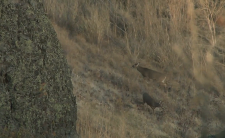 Mike Schoby and Kevin Steele link up in eastern Washington state for their annual deer camp, this