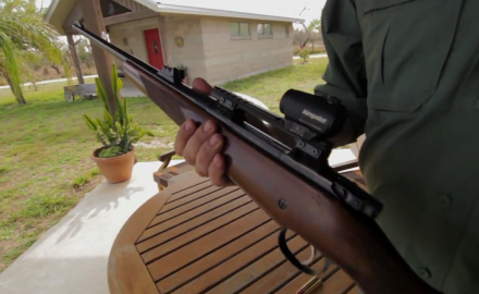 Mike Schoby shows you his choice of weapon and ammunition when it comes to hunting Nylgai.