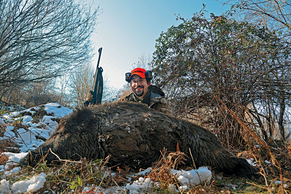 Feral Firepower: Best Hog Hunting Guns for 2015