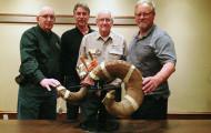 Boone & Crockett Announces Bighorn Sheep World Record