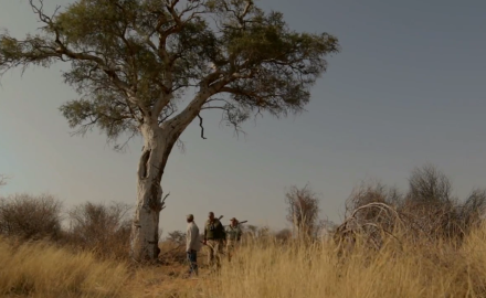 Kevin Steel and Jason Morton are on foot in South Africa in search of a sable.
