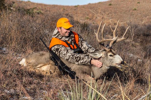 Best Units for Hunting Western Mule Deer