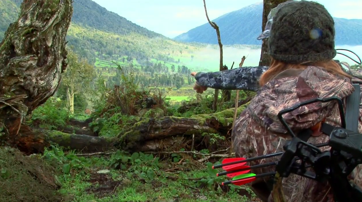 New Zealand Crossbow Hunt