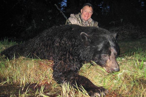 black_bear_f