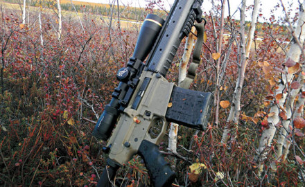 Lightweight and deadly accurate, the CA-10 fits the bill in Alaska.  When my hunting partner Steve