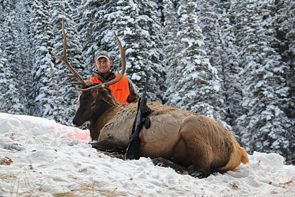 The Nonresident's Guide to Planning an Elk Hunt