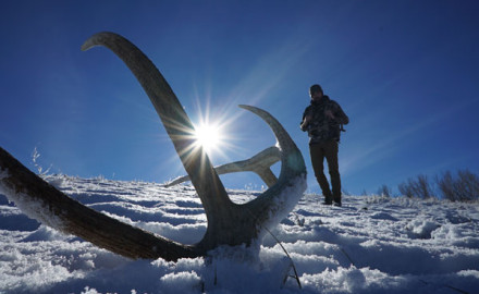 elk-shed-hunting-tricks