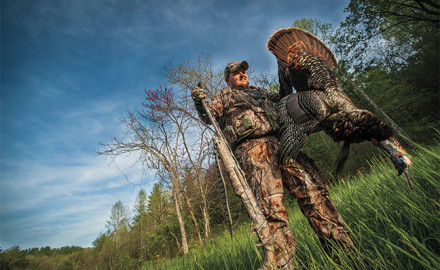 Tops-tips-for-stubborn-turkey-hunting