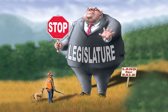 public-land-and-politics