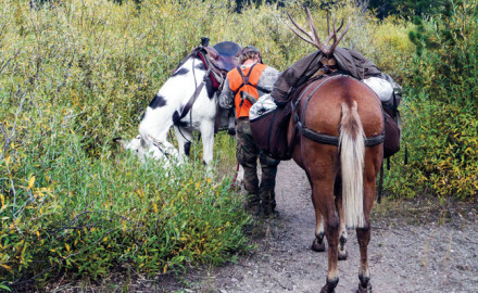 Many hunters don't have the finances to spring for a guided horseback hunt in the West, but