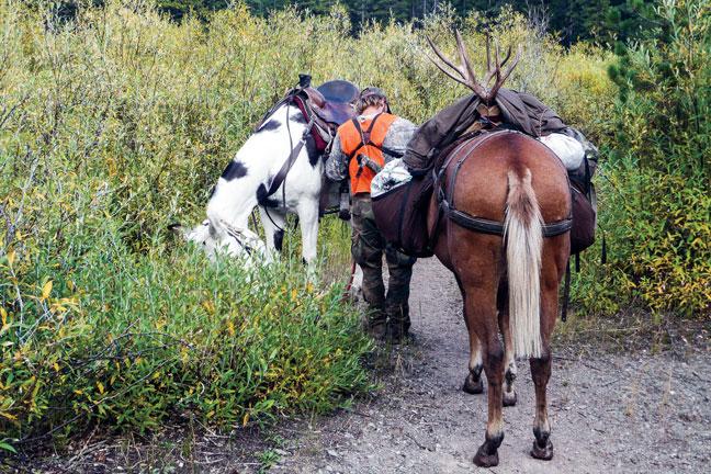 DIY-Horseback-Hunting-guide
