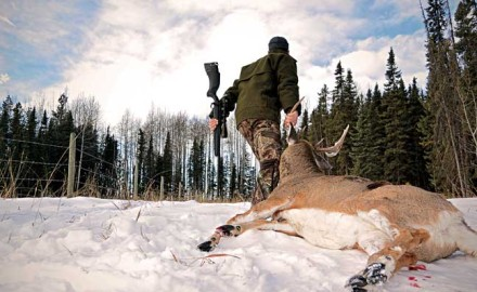 best-states-to-hunt-whitetail-in-the-west-featured