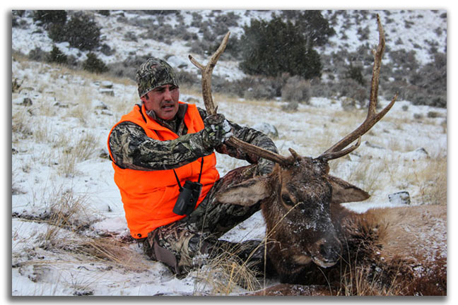 elk-tough-hunts-in-north-america-for-DIY