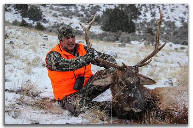 elk-tough-hunts-in-north-america-for-DIY
