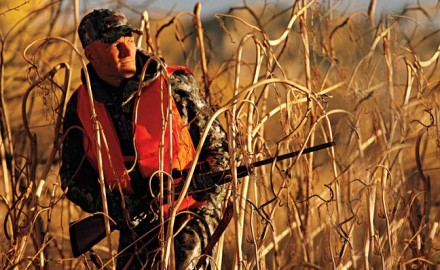 how-to-still-hunt-whitetail-bucks