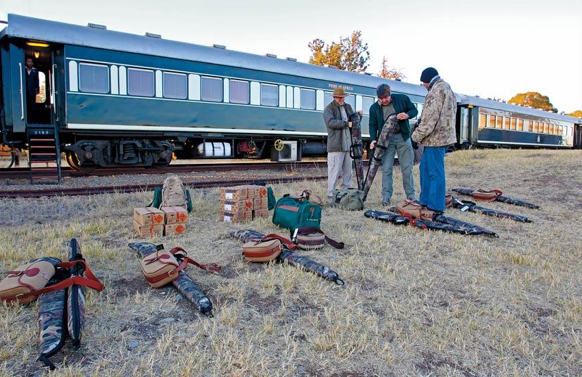 safari-on-african-train