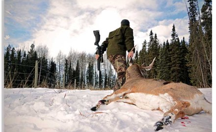 According to some statistics, 84 percent of hunters never leave their home states. That's