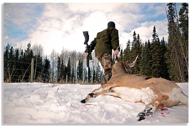 states-to-hunt-whitetail-in-the-west