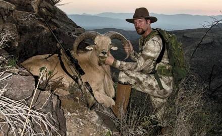 Aoudad-hunting