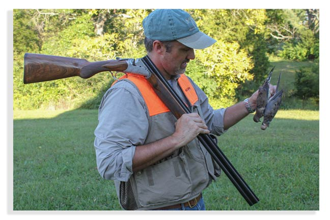 doves-for-new-hunters