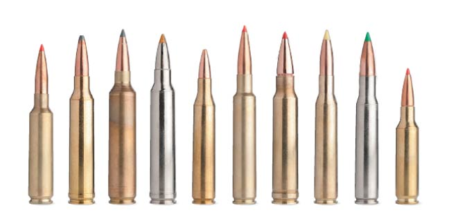 Top 10 Big Game Rifle Cartridges