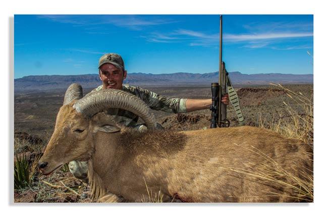 hunting-exotics-in-texas