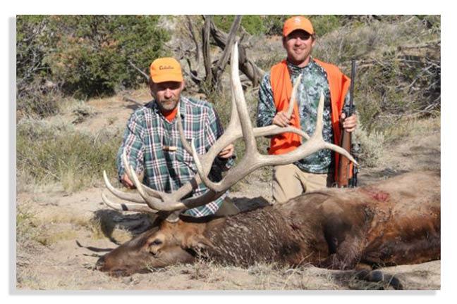 tips-for-hunting-elk