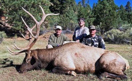 Hogan's-bull-11