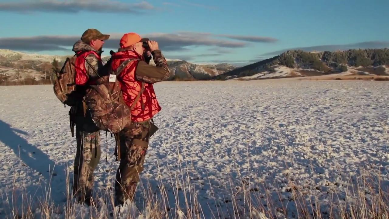 Gearing Up for Montana Whitetails